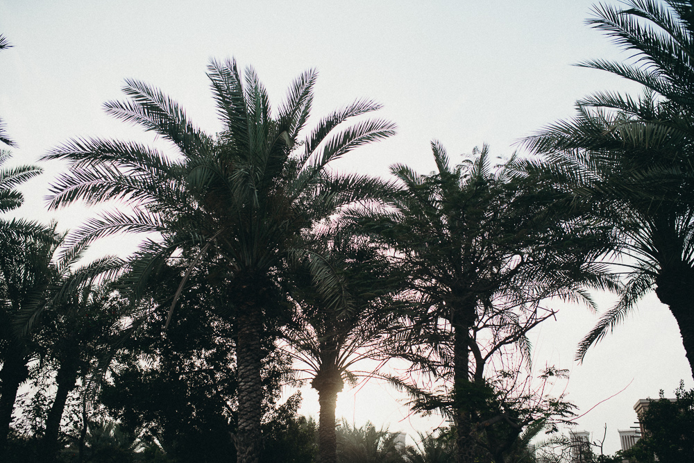 Dubai-Reiseblog-Reisetips-6420
