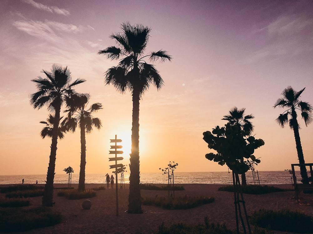 Dubai-Reiseblog-Reisetips-Wüste-8309